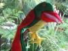Parrot Hand Puppet Large Cotton